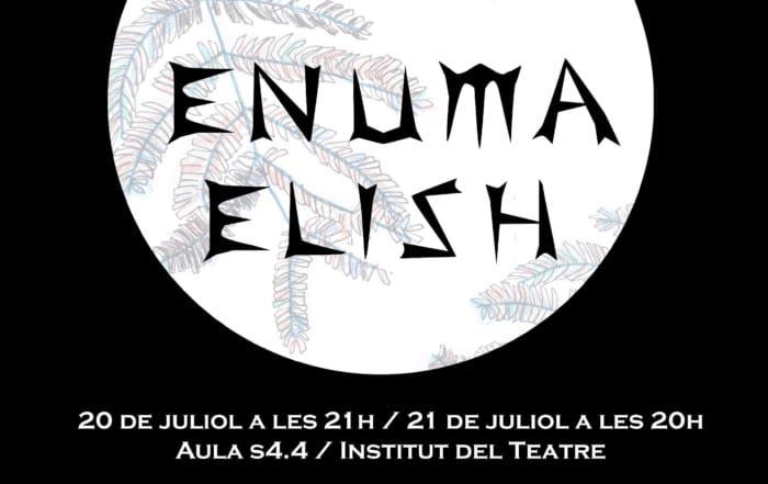 cartell_ENUMA web