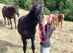 Rosa Galindo cavalls